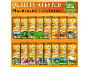 herbal tinctures banner