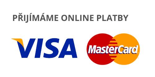 rychlé platby online