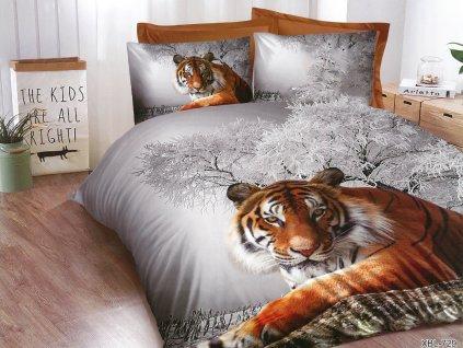 tygr v zimě