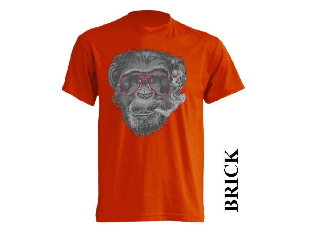 ce7bfd124bd Pánské tričko s potiskem opice s cigaretou