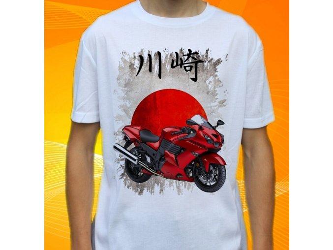 Kawasaki Ninja ZX 2010 h
