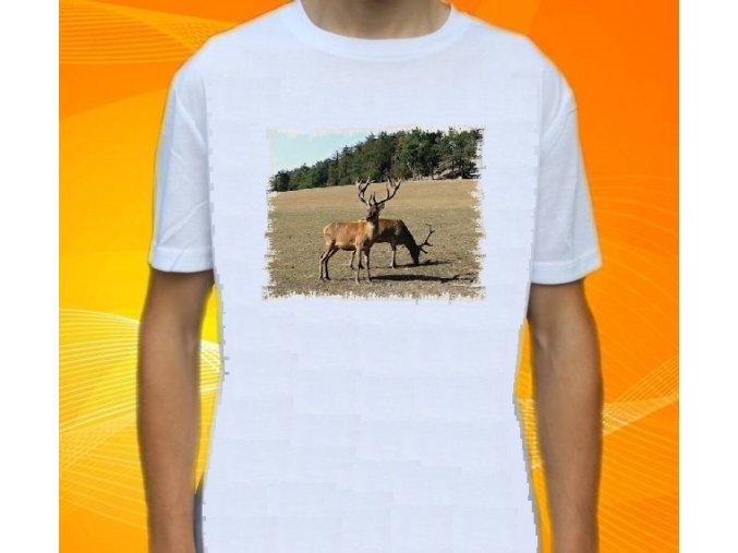 tričko, dětské, pánské, potisk, myslivec, jeleni