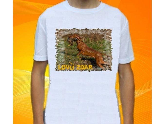 tričko, dětské, pánské, potisk, myslivec, pes, kachna