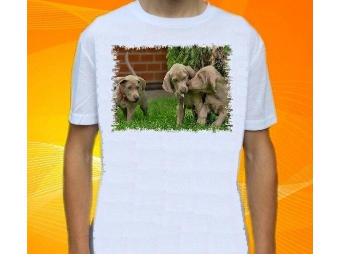 tričko, dětské, pánské, potisk, myslivec, lovecká štěňata