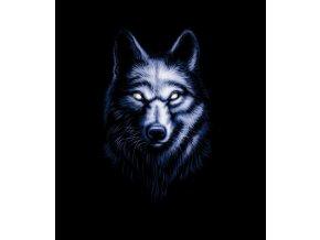 nazehlovaci-transferovy-obrazek-stin-vlka