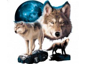 nazehlovaci-obrazek-vlci-skála