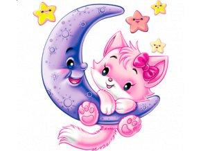transferovy-obrazek-mesic-kote