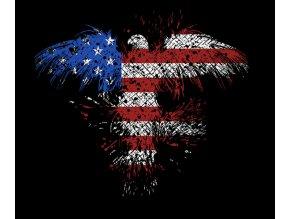 transferovy-obrazek-americka-orlice