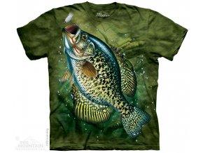 tričko, ryba, slunečnice pestrá, batikované, potisk, rybářské