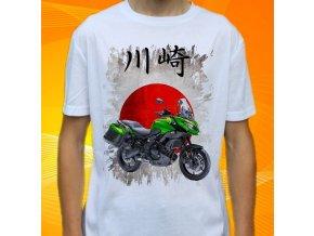 Kawasaki VERSYS h