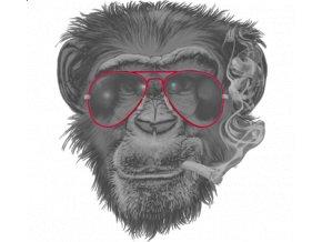 Dámské vtipné tričko s potiskem opice s cigaretou