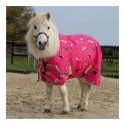 Potřeby pro pony a shetty