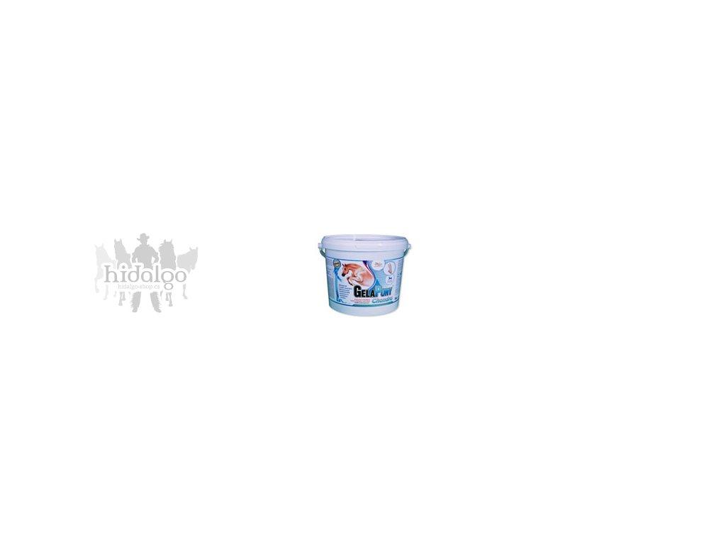 gelapony chondro 1800
