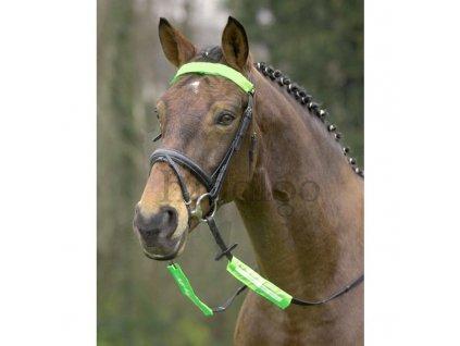 Uzdečky a uzdy – potřeby pro koně Hidalgo 014030cf25