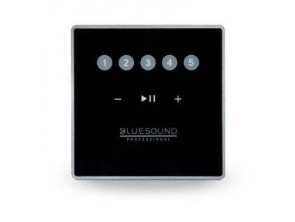 Bluesound Professional CP100