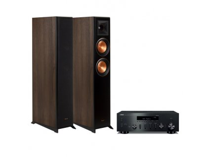 r n602 + rp 6000f walnut vinyl pair 1