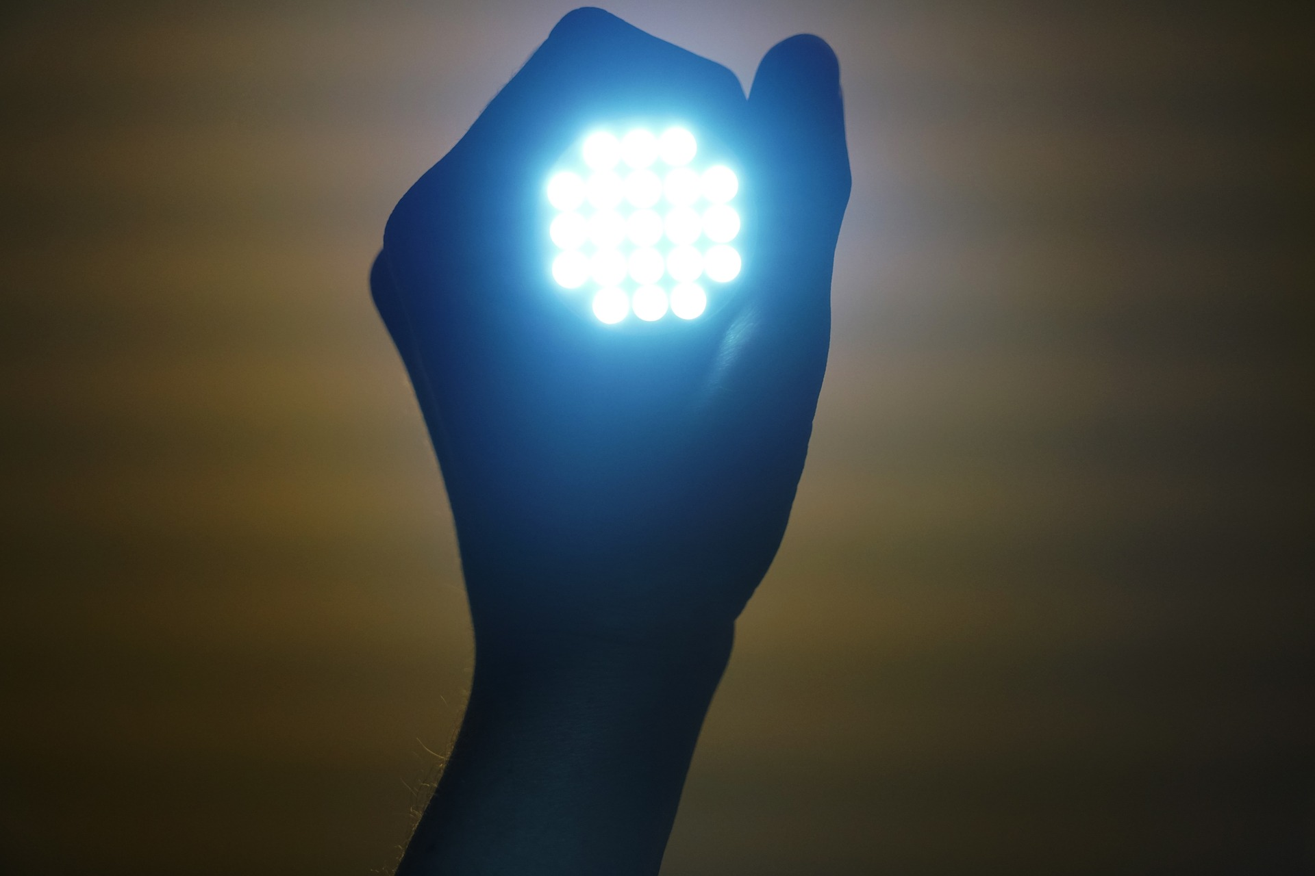 Pěstování pod umělým osvětlením: HPS vs. LED