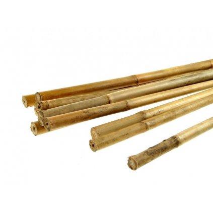 Bambusová tyčinka 120cm 1ks Cover