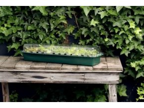 HGA Garden Window-sill propagator Cover
