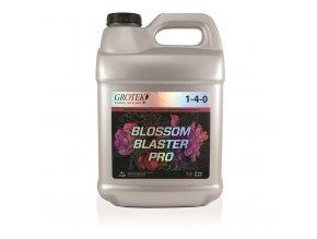 10233 blossom blaster pro