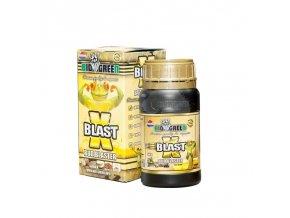 xblast250