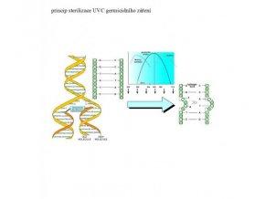 UV-C germicidní zářivka kompaktní 9W (G23, délka 129mm) GV16