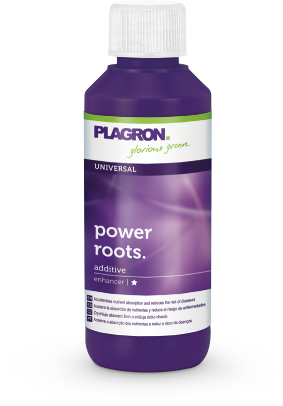 Plagron Power Roots Objem: 250ml