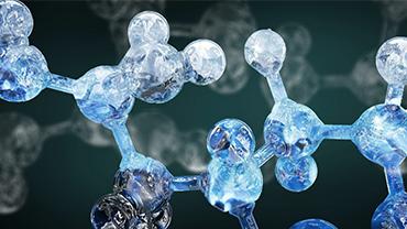 Průvodce aminokyselinami