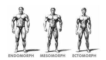 Tréninkové typy, které odpovídají Vašemu tělesnému typu