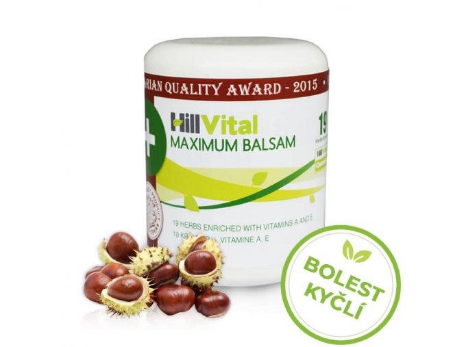Maximum mast na bolesti kyčlí a kyčelního kloubu 250 ml HillVital inf
