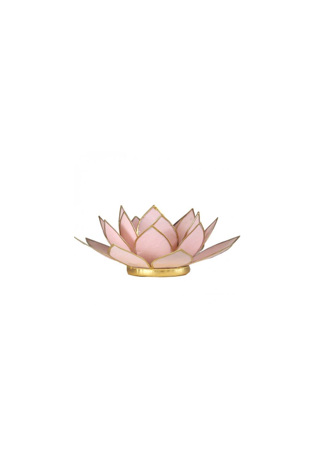 Lotosový svícen - pastelově růžová
