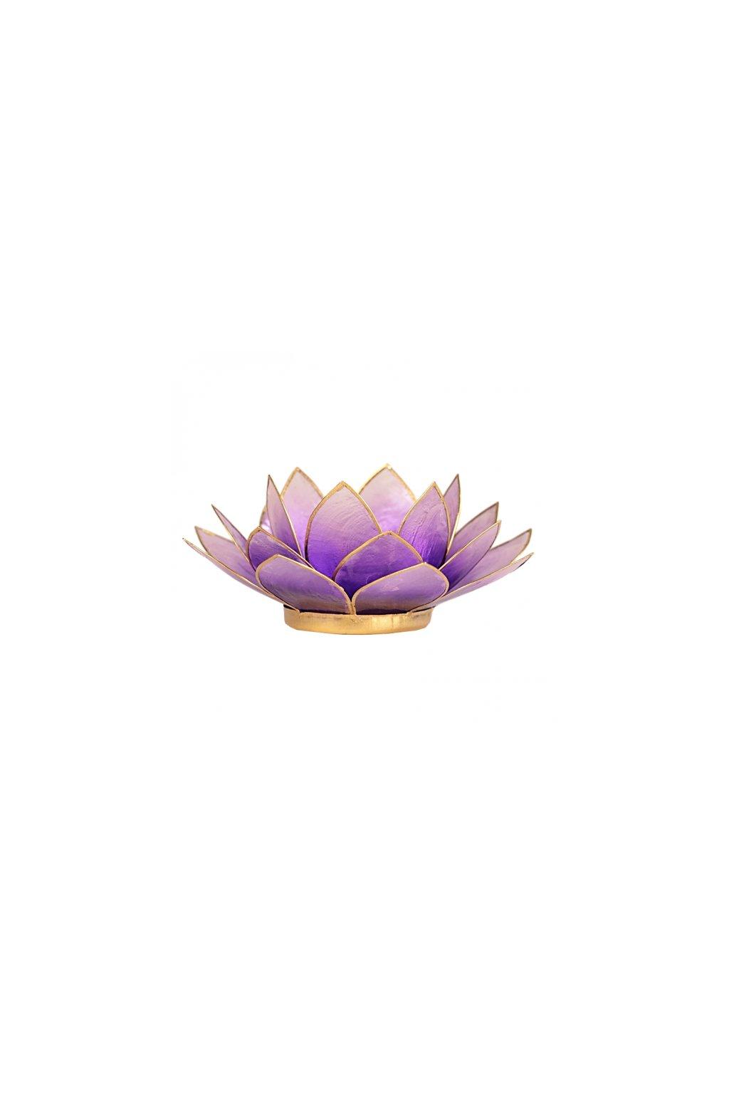 Lotosový svícen - světle fialová