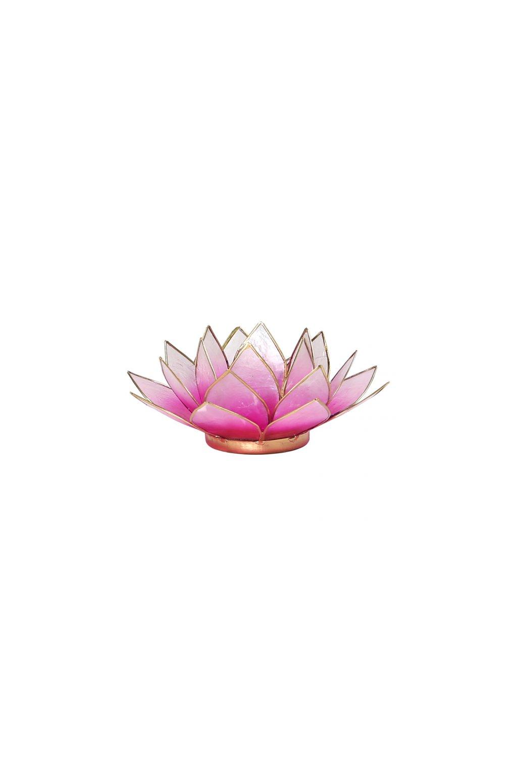 Lotosový svícen - světle růžová