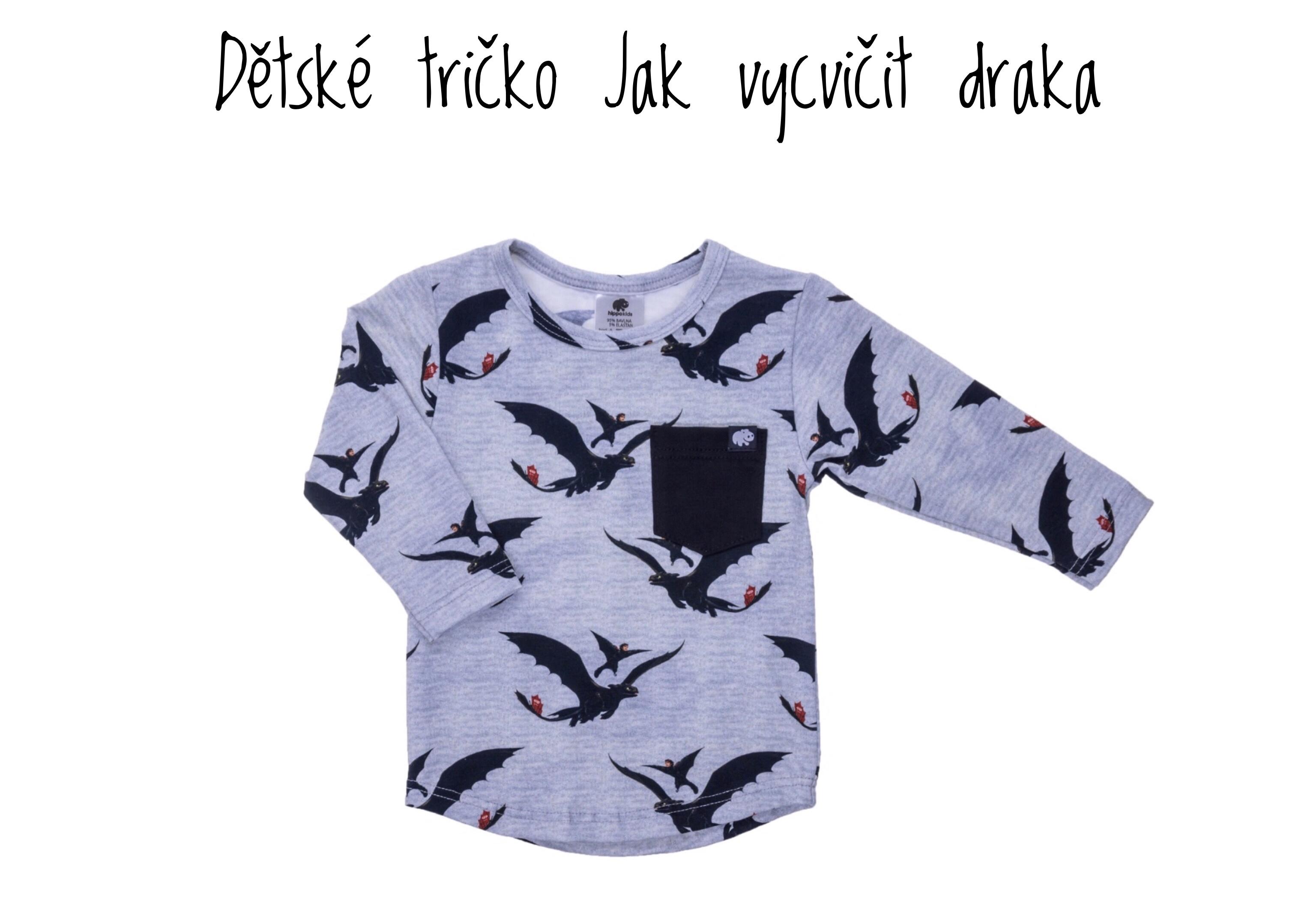 Dětské tričko Jak vycvičit draka