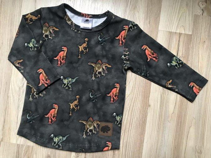 Dětské a kojenecké tričko s dlouhým rukávem Dinosaurus. Triko s dlouhým rukávem. Klučičí šedé tričko. Motiv dino. Oblečení pro miminka. Oblečení pro děti. Dětské a kojenecké oblečení. Kvalitní české oblečení.