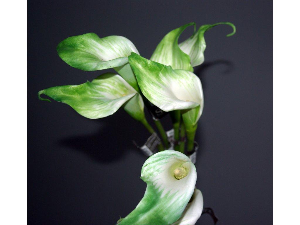 Květina/dekorace kala lily
