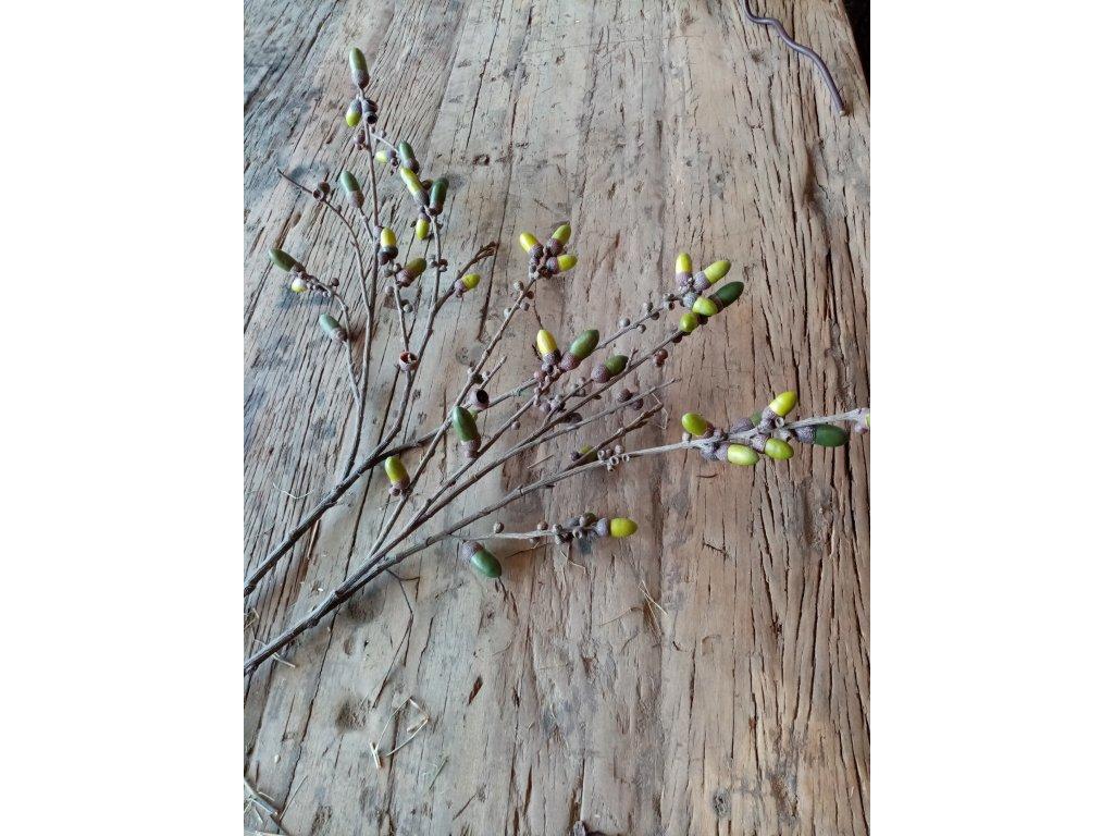 Květina/dekorace větev žaludy 90 cm