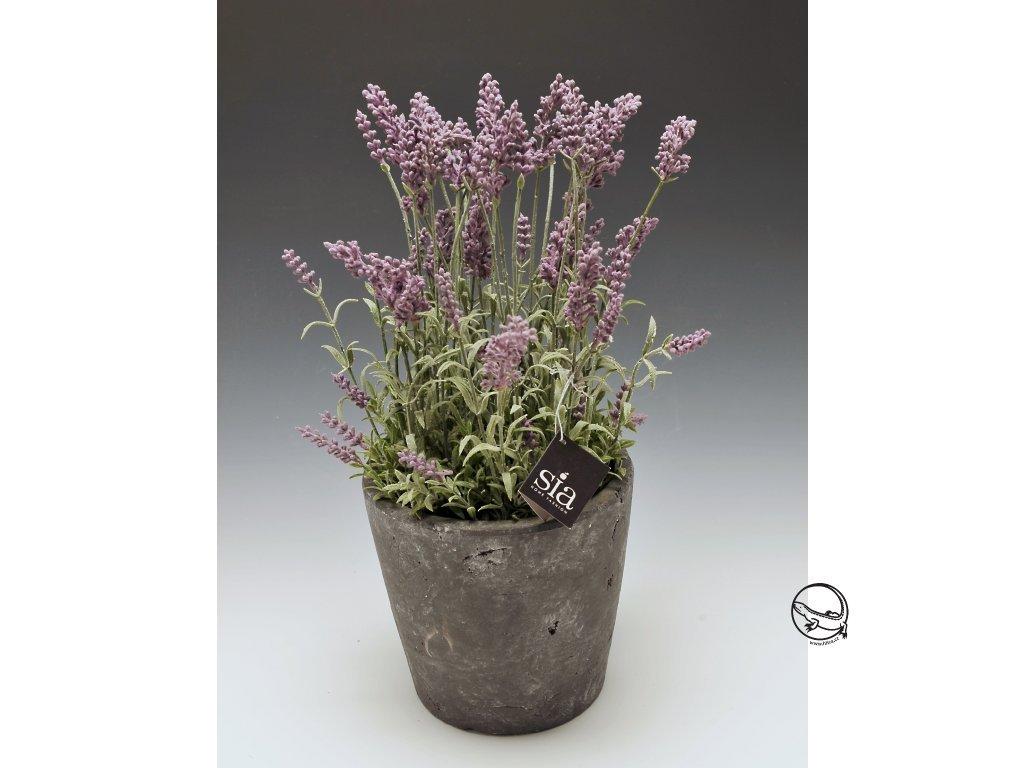 Květina/dekorace Levandule / květináč výška 35 cm
