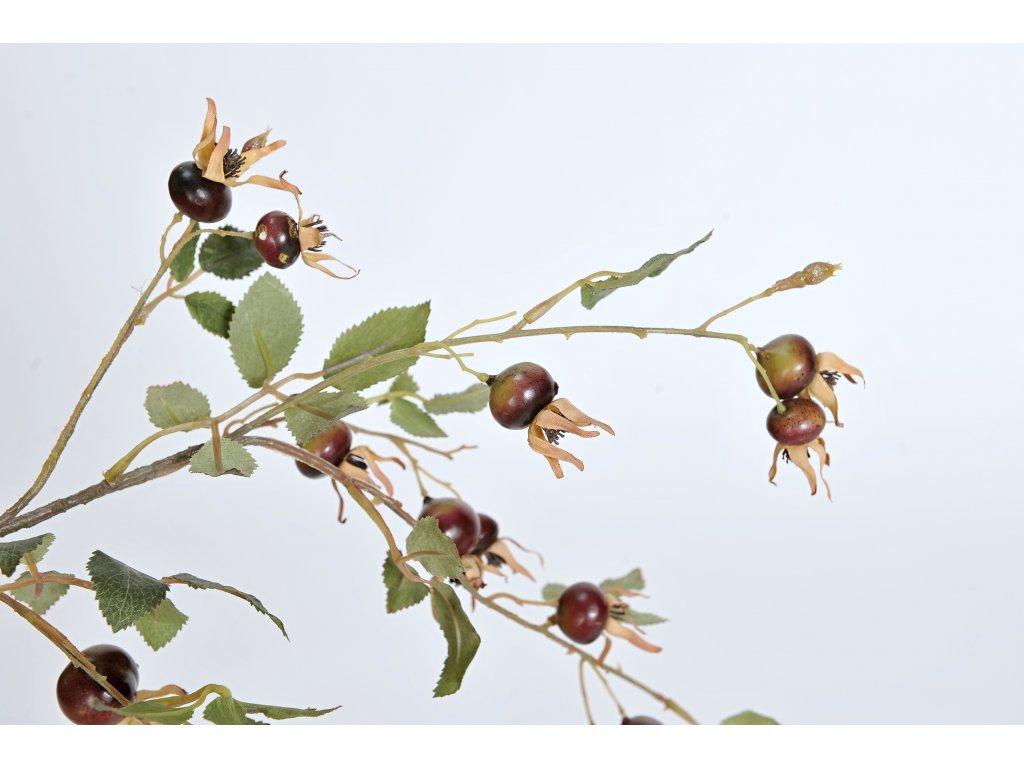 Květinadekorace větev šípek 80cm velký tmavý (2)