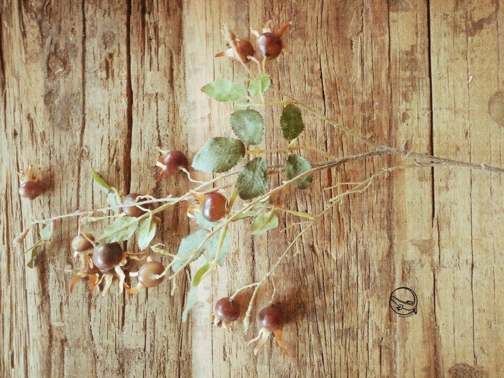 Květina/dekorace větev šípek 80cm velký tmavý