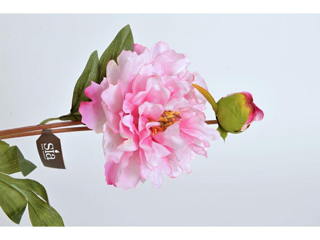 Květina PIVOŇKA růžová 70cm