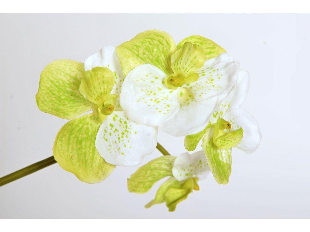 Květina větev orchidej zeleno bílá 26cm (3)