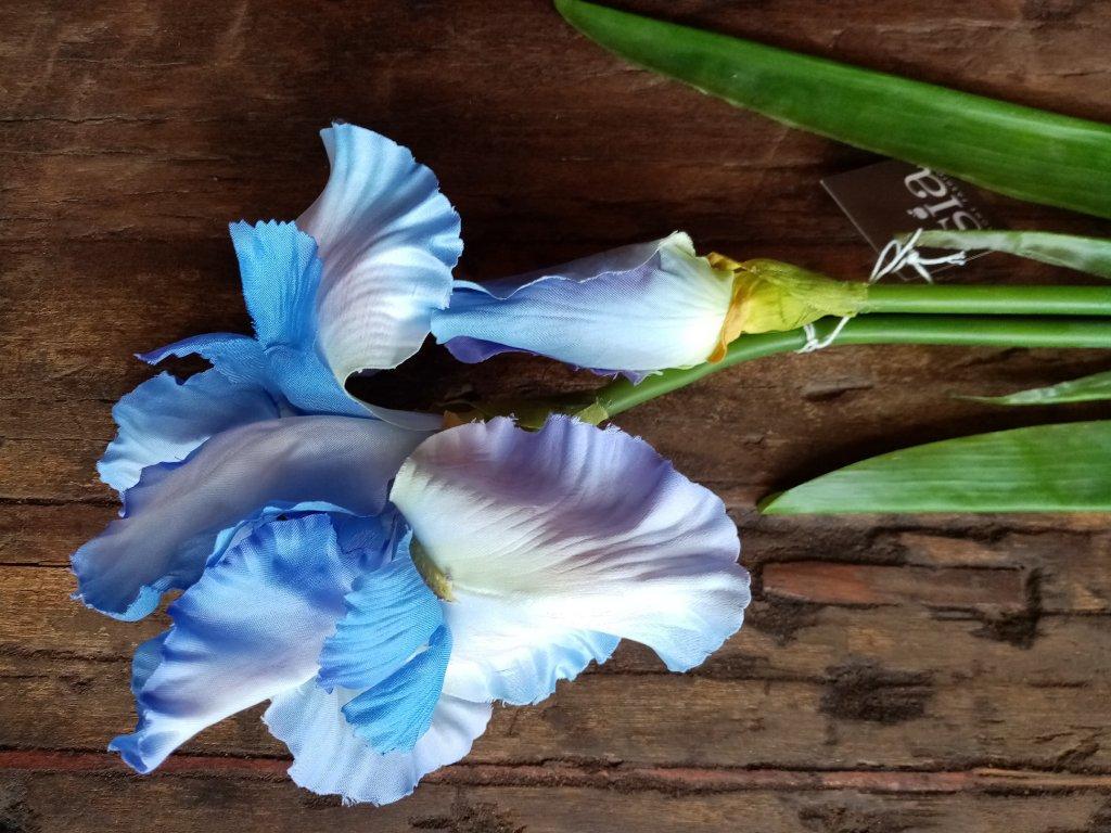 Květina KOSATEC modrý 90cm
