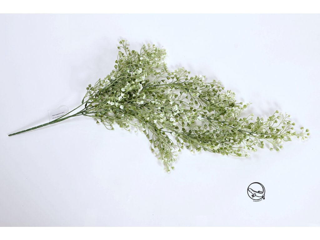 Náprstník větev (1)