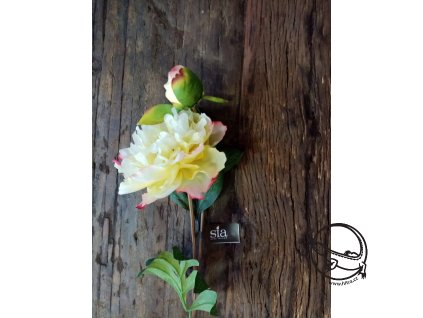 Květina PIVOŇKA žlutá 70cm