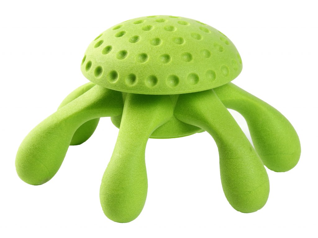 chobotnice zelena