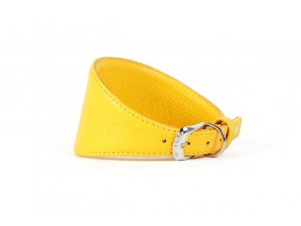 Obojek kožený CoLLaR Glamour GREYHOUNDS pro chrty - žlutý