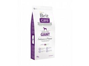 Brit Care Dog Giant Salmon&Potato GF