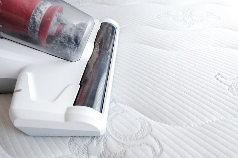 Jak účinně vyzrát nad roztoči v ložním prádle, v matracích či v koberci