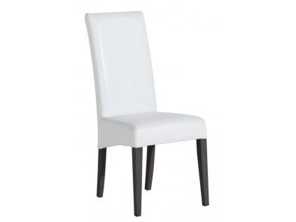 Jídelní židle ART-VISION 9001